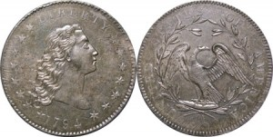 «Flowing Hair Silver Dollar»