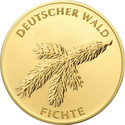 Germany 2012. 20 euro. Fichte
